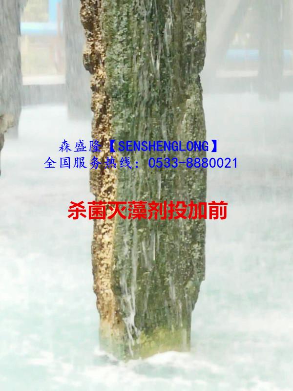 循环水杀菌灭藻剂氧化与非氧化专利配方